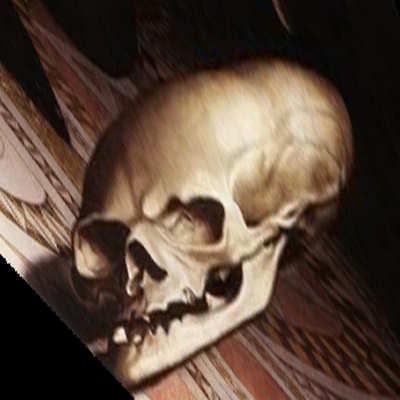 The Ambassadors Skull
