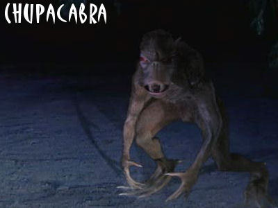 The Chupacabra Pictures