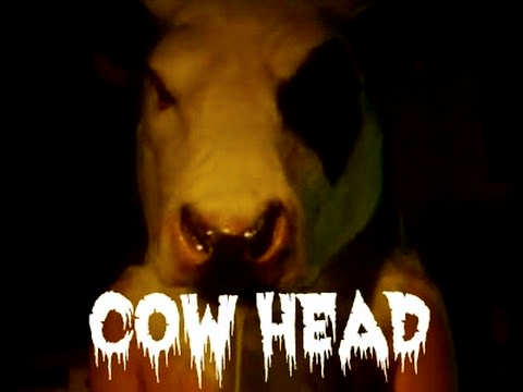 Cow Head Story