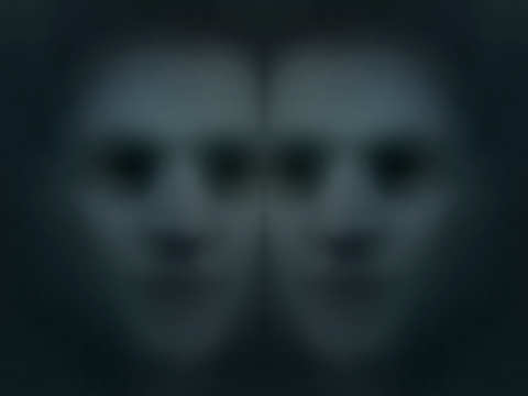Doppelganger Stories Scary Website