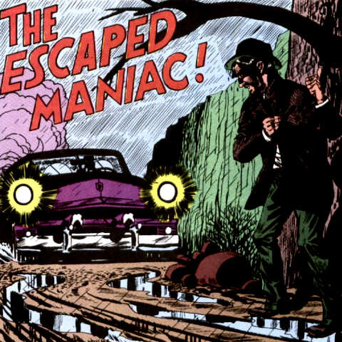 Escaped Maniac
