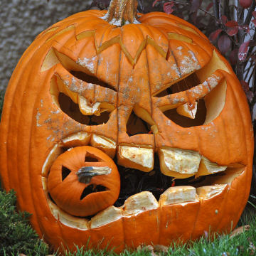 Halloween Decorations | Scary Website
