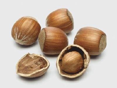 Nut Games