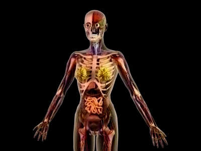 Scary Facts About The Human Body