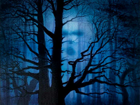 Watcher in the Woods is a scary movie for kids directed by John Hough who