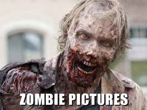 Zombie Pictures